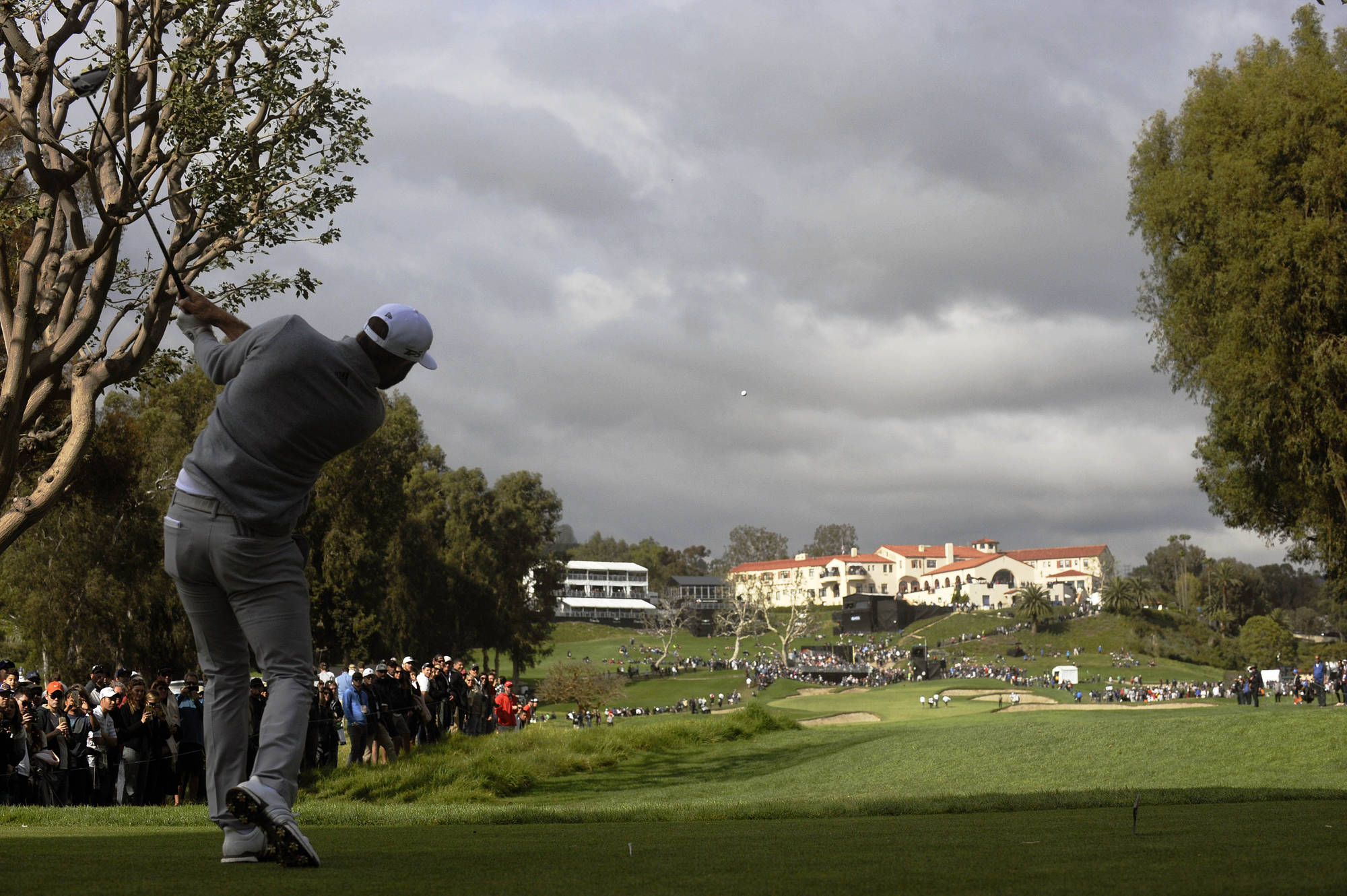 In the Midst of a Storm, Riviera Shines