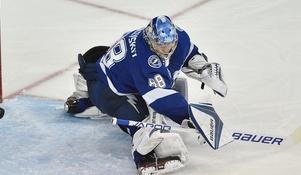Hockey Stop: 2018-19 NHL Award Winners Predictions (Vezina and Calder)