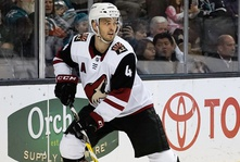 Would Niklas Hjalmarsson be the right player for the Toronto Maple Leafs to target?