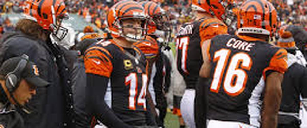 2017 Cincinnati Bengals Preview
