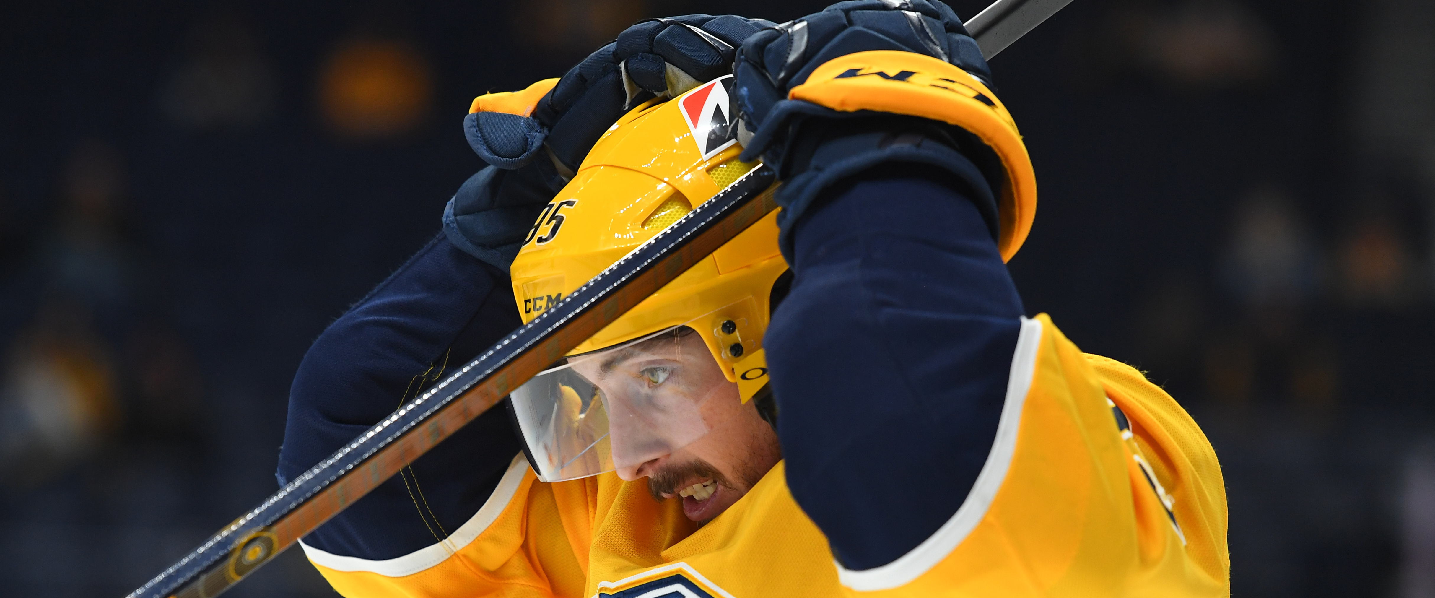 Predators: More injuries amongst the win-streak