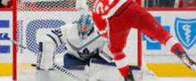 The Leafs Goalie Situation is in the system and here's why