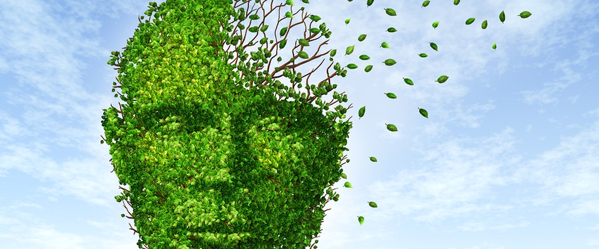 Is it Possible to Reverse Dementia? Is There Hope?