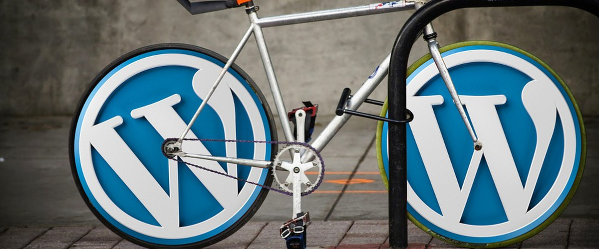What Makes WordPress The Best CMS On The Internet