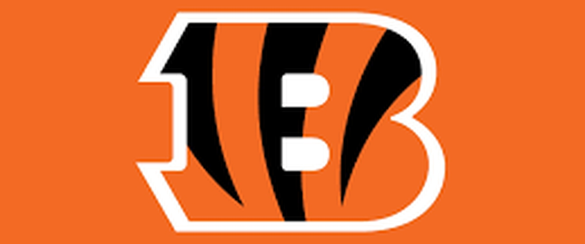 The stats of the Cincinnati Bengals in regards to Fantasy Football 2019
