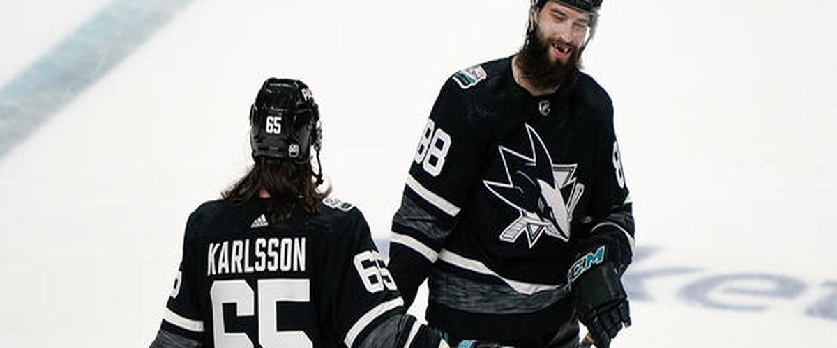 NHL DFS: DraftKings/FanDuel Daily Fantasy Hockey Optimal Lineups - May 11th 2019