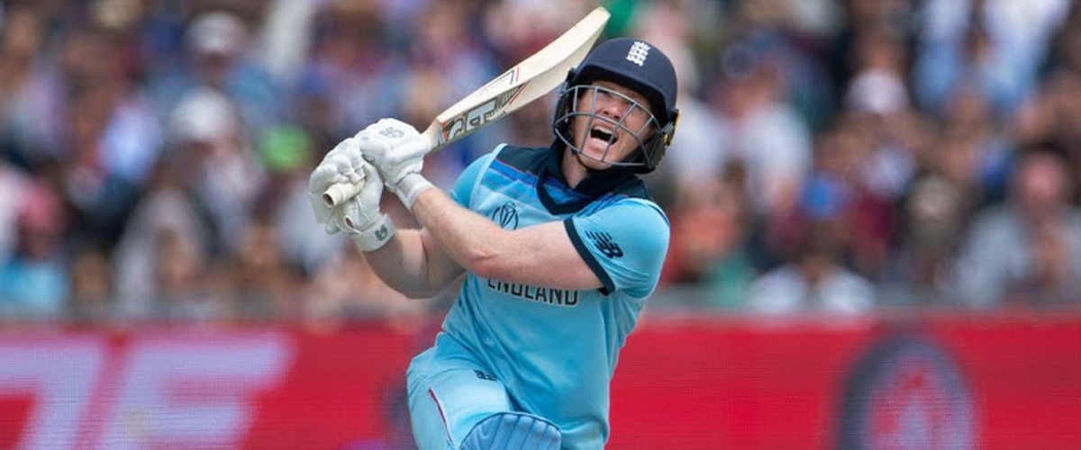 Most Sixes in T20 Cricket